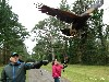 I love this photo that Christian Kovac sent in from the Kovac recent Hawk Walk.
