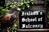 Scott Keelin sent this great photo of Earrach examining our Falconry School sign!