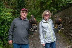 Tim & Linda Ardendt sent these great photos from their recent Hawk Walk flying wonderful Maya & Fomhar with us.