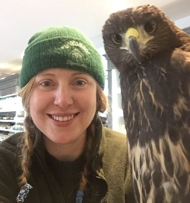 For World Falconry Day (slogan this year is Women Falconers) here is Meaghan, with one of the baby hawks, stopping for coffee at Mrs Tea\'s coffee shop!